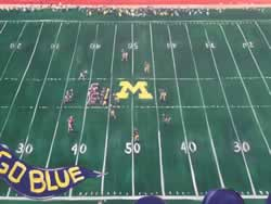 Michigan wolverines maize rage college football mural